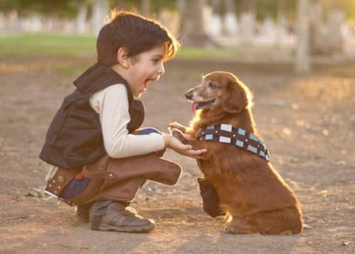 """not-quite-certain: """" where-the-wildlings-are: """" godotal: """" Chewie, We're home!!! """" HOW DARE SOMEONE MAKE SOMETHING SO ADORABLE AND FANTASTIC """" omg """" the caption though"""
