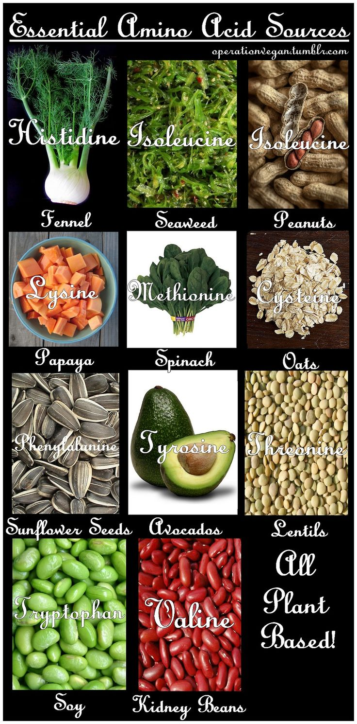 All The Essential Amino Acid Sources: Vegan Edition