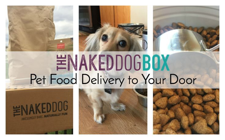 The Naked Dog Box: Pet Food Delivery to Your Door