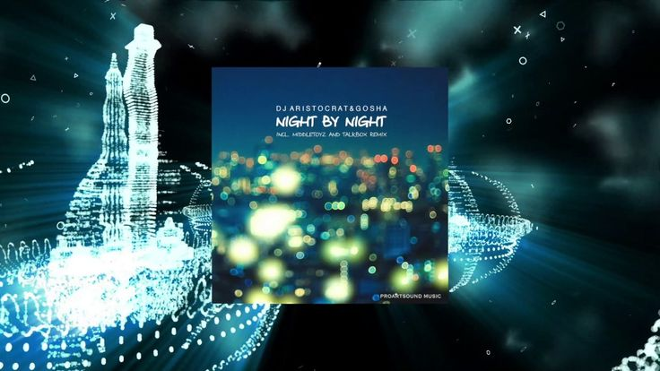 DJ Aristocrat & Gosha   Night By Night (Middletoyz Remix)
