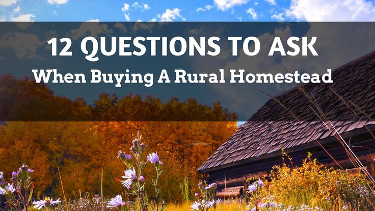 Just Plain Marie: 12 Questions To Ask About Homestead Land - and FRE...