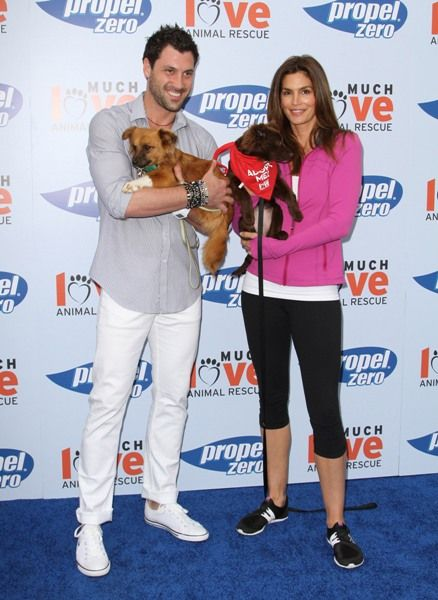 Celebs go to the dogs in Malibu