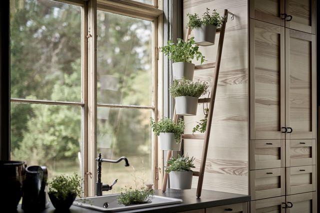 25 best ideas about piedestal sur pinterest piedestal - Plante d interieur ikea ...
