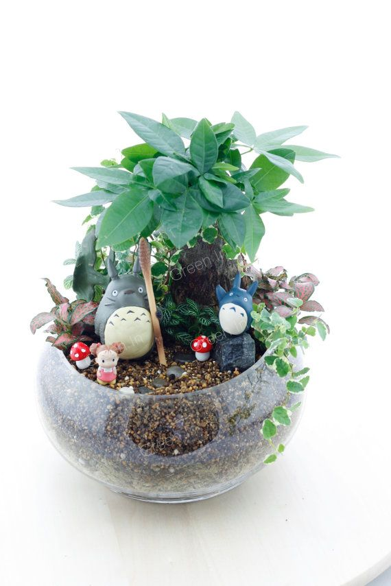Totoro terrarium miniature / by GreenInHK