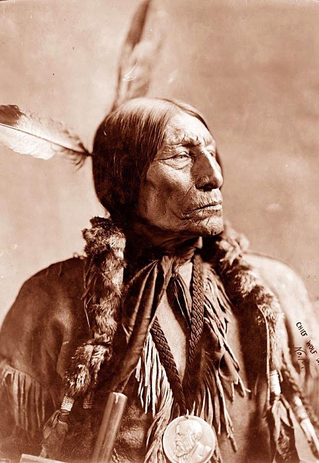 La nueva Ilustración Evolucionista / The new Evolutionary Enlightenment: Jefes Cheyenne y conductas de riesgo