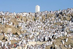 What is the etiquette of standing on Arafah and any supplication? Read the answer here: