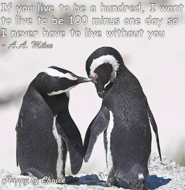 Penguin love quote via Happy By Choice on Facebook at www.Facebook.com/HappyByChoice1