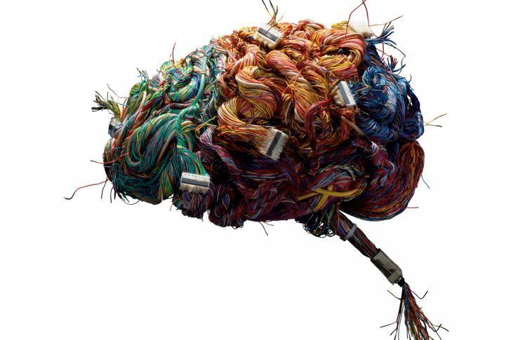 Psychische ziekten te zien in brein   Wetenschap in Beeld