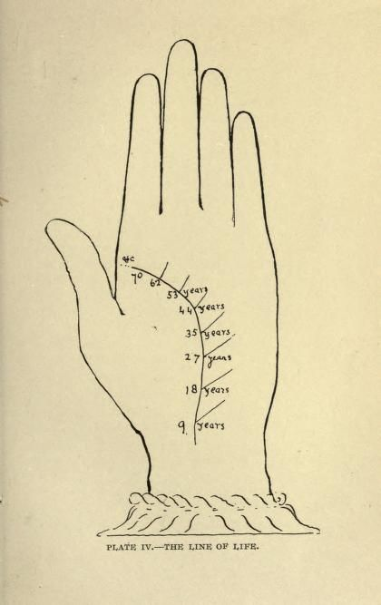1895  |  Indian palmistry : Dale, J. B., Mrs : Free Download & Streaming : Internet Archive