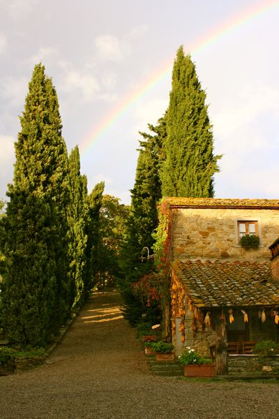 Rainbow over La Vialla- a family run organic farm near Arezzo, Tuscany