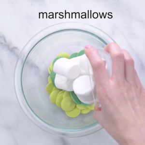 Candy melts and marshmallow fondant