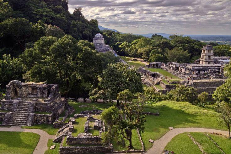 Haut-lieu de la civilisation Maya du VIe et le VIIIe siècle, la cité perdue de Palenque au Mexique présente un témoignage remarquable du génie architecturale et artistique des Mayas.