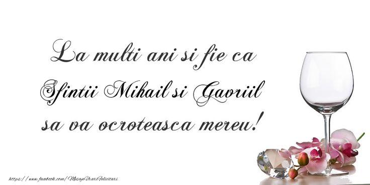 La multi ani si fie ca Sfintii Mihail si Gavriil sa va ocroteasca mereu!