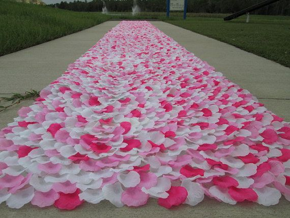 Top 25 Ideas About Pink Carpet On Pinterest Carpets Hot