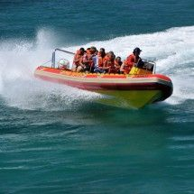 Pro Dive offers Power Boating Trips in Port Elizabeth, South Africa.