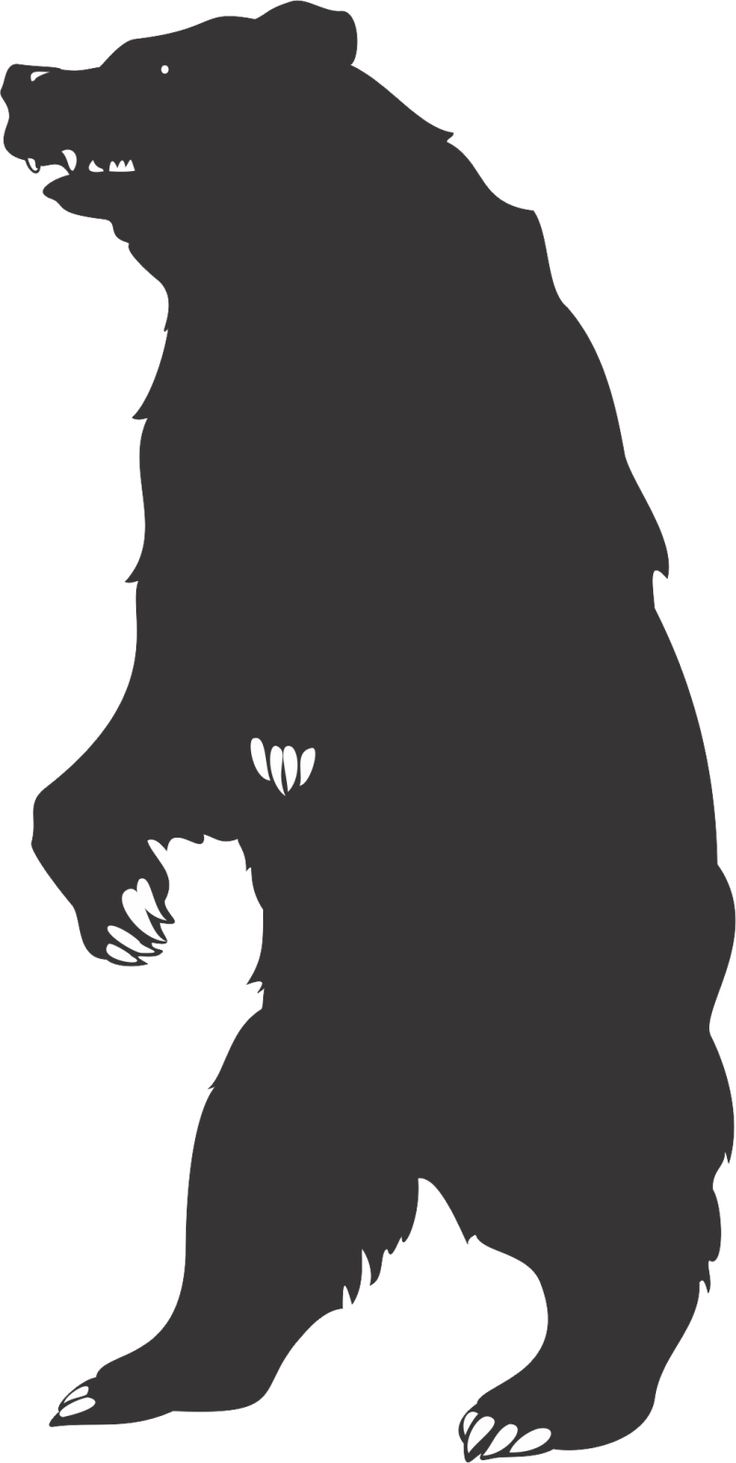 25 Best Ideas About Bear Silhouette On Pinterest Bear