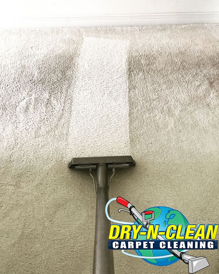 28 Best Dry N Clean Carpet Cleaning Images On Pinterest