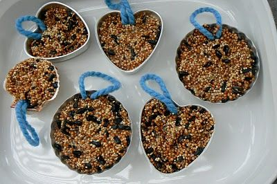 bird seed cakes - sort of like suette cakes. these are a great thing to make during the holidays (good for migrating birds who need a bit of food and, also, as a way of giving a gift to nature)