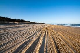 Fraser Island... an island entirely made up of sand.