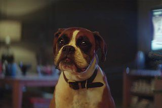 John Lewis Christmas adverts over the years: Including amazing 2016 #BusterTheBoxer commercial - https://www.aivanet.com/2016/11/john-lewis-christmas-adverts-over-the-years-including-amazing-2016-bustertheboxer-commercial/