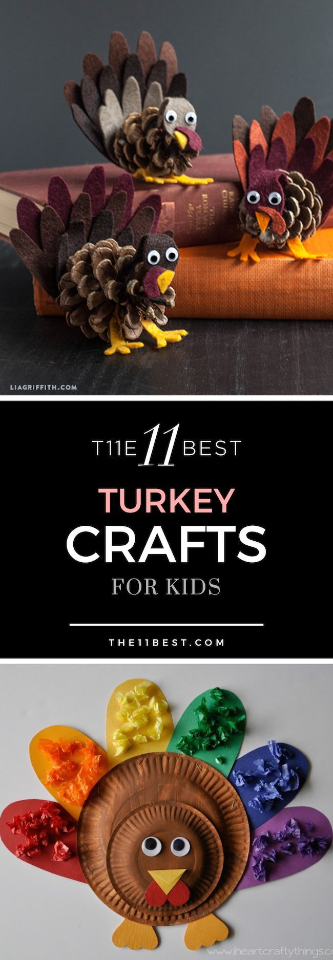 DIY turkey craft and thanksgiving ideas for kids