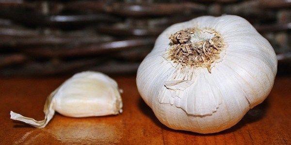 Saviez-vous que l'ail est bon pour la santé et renforce votre système immunitaire ?