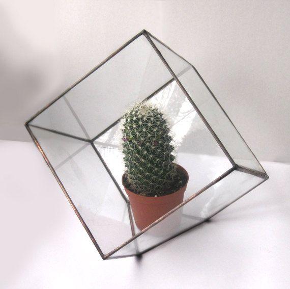 #smallstainedglassterrarium #polyhedron #geometricplanter #succulentterrarium #terrarium #stainedglassterrarium #moderncontainer #modernterrarium #cube #cubeterrarium