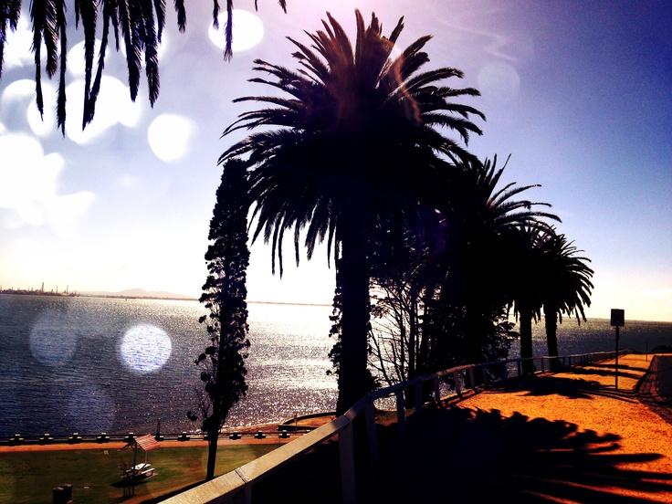 Geelong Beach