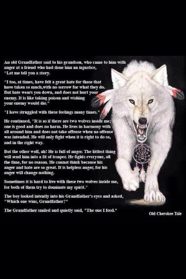 White wolf spirit meaning mud pie soap dispenser