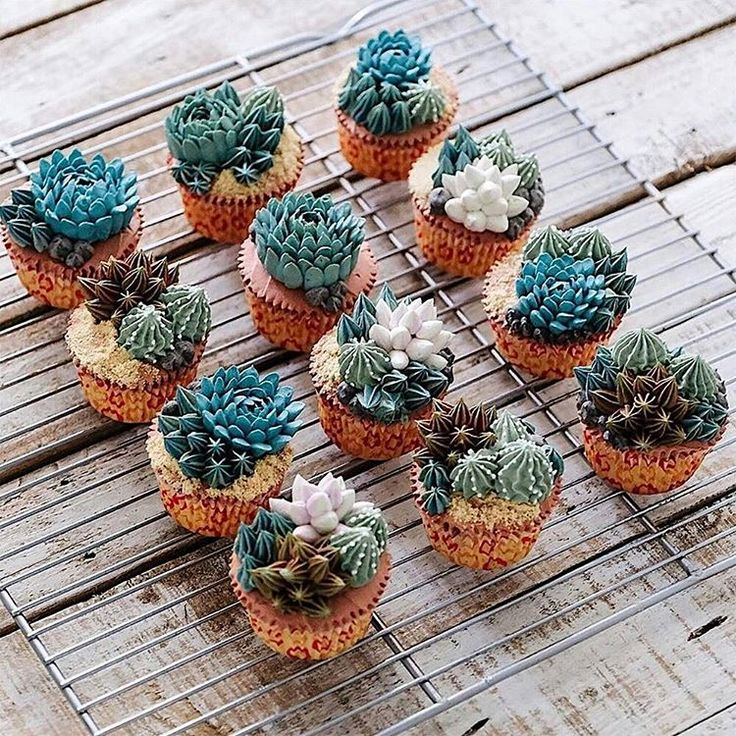 "3,152 Likes, 170 Comments - Kat Williams (@rocknrollbride) on Instagram: ""OMG these succulent cakes by @ivenoven are SO FREAKING AMAZING! 🌵🎂✨"""