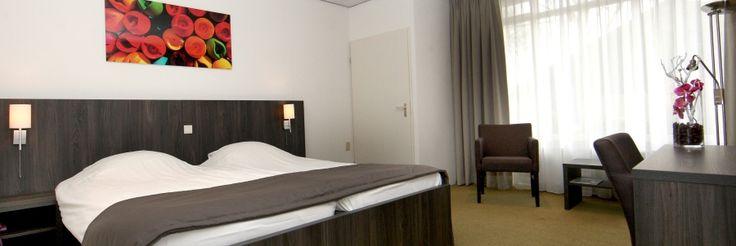 Hotel-Drenthe, koekoekshof Elp, 45 pppn