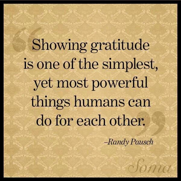 Showing gratitude is the most powerful thing humans can do for each other ~ Randy Pausch. Happy Thanksgiving