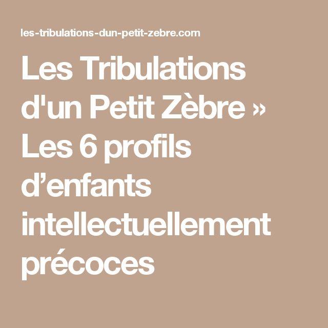 Les Tribulations d'un Petit Zèbre » Les 6 profils d'enfants intellectuellement précoces