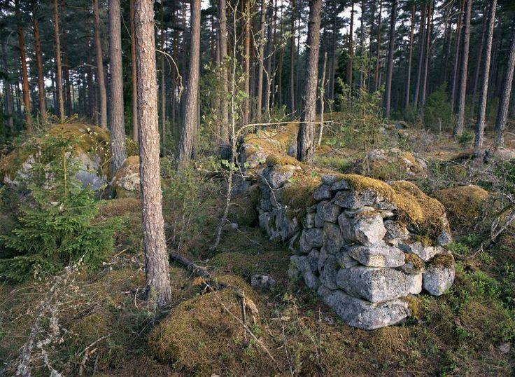 Åsa Nyhléns bilder på de småländska stenmurarna berättar om en tid då Ryssland skickade hjälpsändningar med råg till svältande svenskar. Då smålänningar emigrerade till Amerika, och de som blev kvar plockade sten för att överleva.