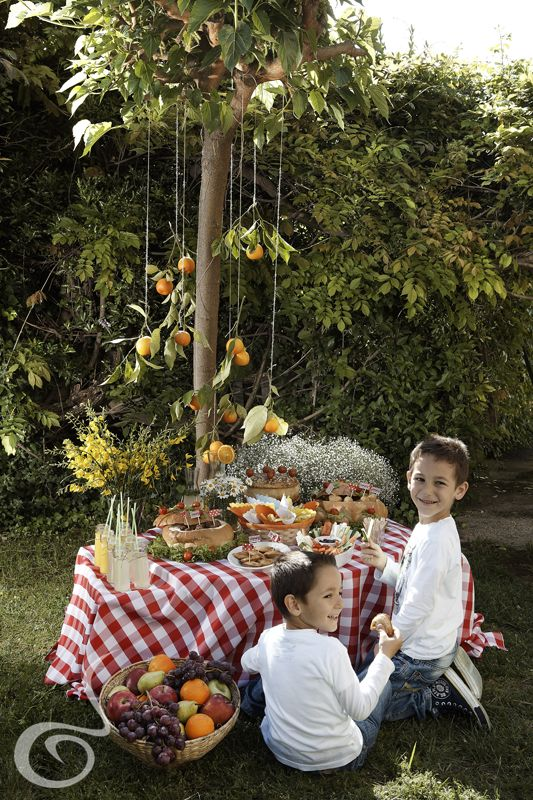 Summer is here!! This means great weather, fun and picnic by ARIA Fine Catering of course...