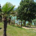Uno scorcio del lago. #veduta #lago #bellavista #natura #relax #relais #attivita #ariaaperta #piante #natura #passeggiata #barca #sole #starbene #benessere #toscana