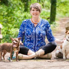 Kindred Spirit Pet Sitting Dog Sitter in Oak Ridge, TN