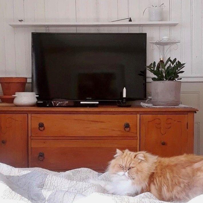Une Belle Commode Antique Denichee Sur Lespac Par Marianebi22 Et Son Chat In 2020 Flat Screen Electronic Products Flatscreen Tv