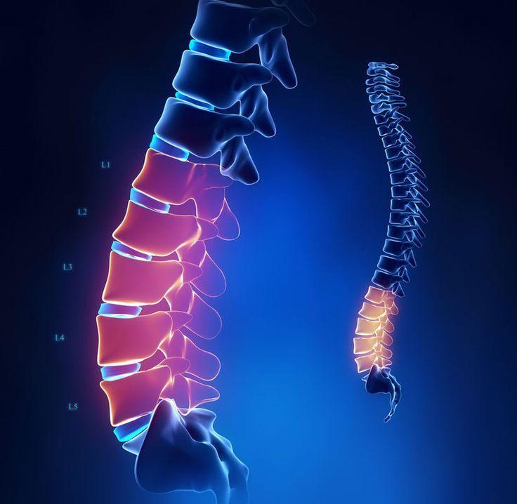 Комплекс «Крокодил»способствует внутреннему массажу органов. Сжимая, растягивая и поворачивая их, он помогает укрепить мускулатуру, повышает эластичность связок и сухожилий, исправляет врождённые и п…