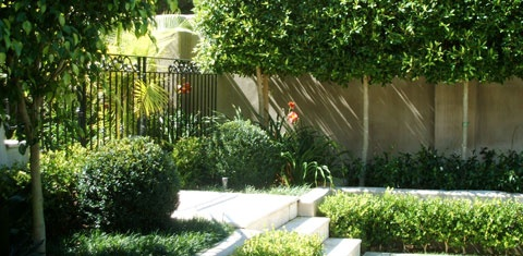 Landscaping Ideas Shafer Design Auckland