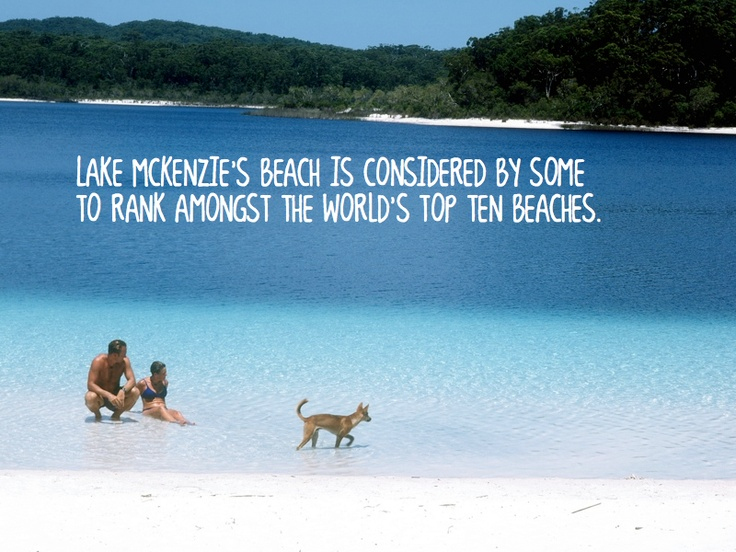 Thanks for the sound out Tourism Australia - we agree!!!  #fraserisland #queensland #australia www.fraserisland.net