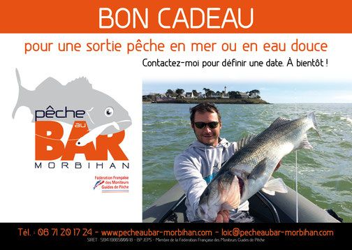 Idée cadeau sortie pêche au bar - pecheaubar-morbihan