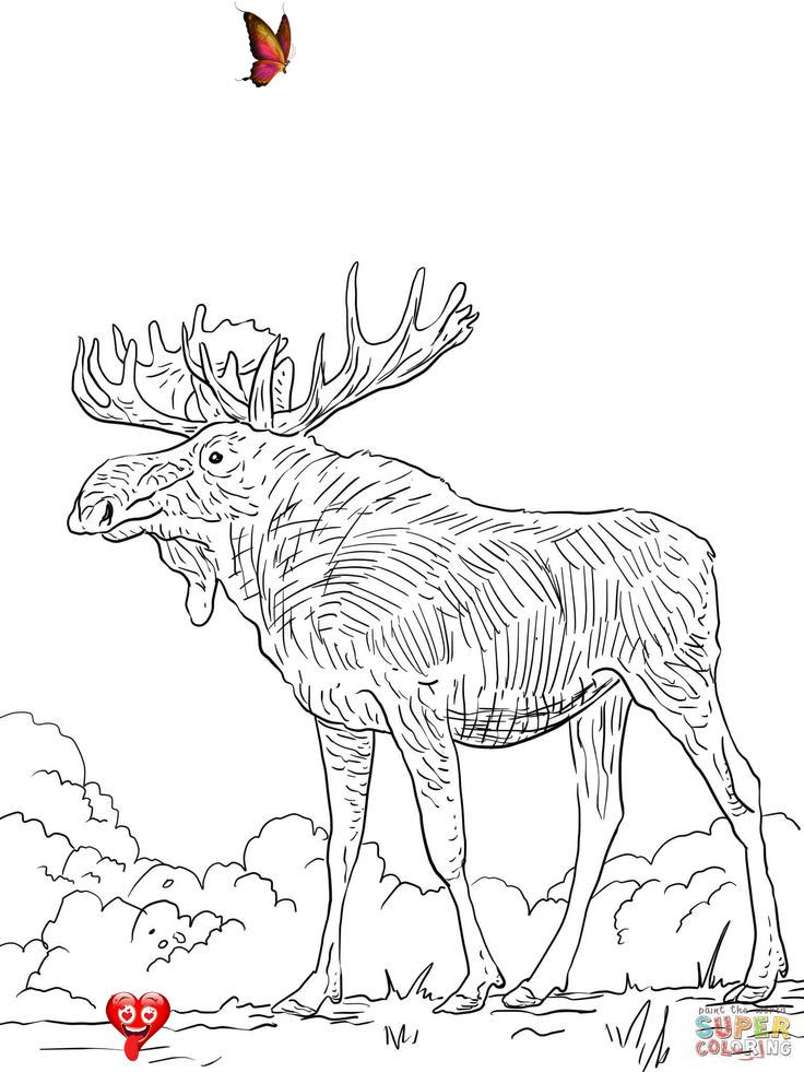 30 102 Dalmatians Coloring Pages Printable Coloring Pages 102 Dalmatians Coloring Pages Free Printab Deer Coloring Pages Animal Coloring Pages Coloring Pages