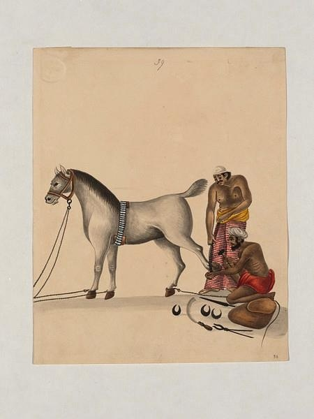 from an Indian book c. 1800s - Digital Rare Book: A Guide to Training and Horse Management in India - With a Hindustanee stable and veterinary vocabulary and the Calcutta Turf Club tables for weight for age and class By Horace Mathew Hayes Published by Thacker, Spink & Co., London - 1878