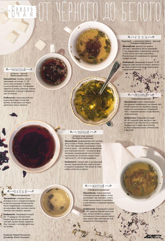 Зеленый, желтый, черный и другие основные виды чая. Инфографика - Продукты и напитки - Кухня - Аргументы и Факты