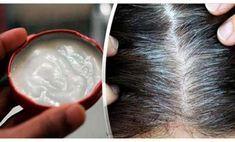 Cómo aplicar aceite de coco correctamente para quitar las canas, la caspa y detener la caída del pelo. Comparte es importante. – Info Viral