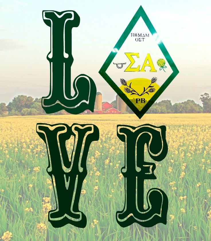 Love Sigma Alpha by Molly Lass of SA Upsilon Chapter