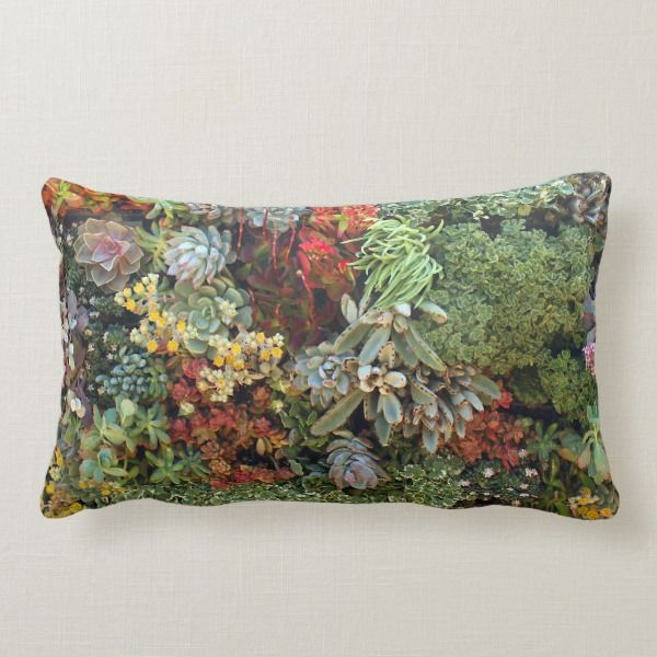Succulent Garden 2 Lumbar Pillow Zazzle Com Succulent Throw Pillow Design Succulents Succulents
