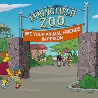 """Los dibujos animados de Los Simpsons, tan crudos como siempre.  """"Zoo de Springfield"""". """"Visita a tus amigos los animales encarcelados"""".  ¿Qué piensas sobre los zoos?"""