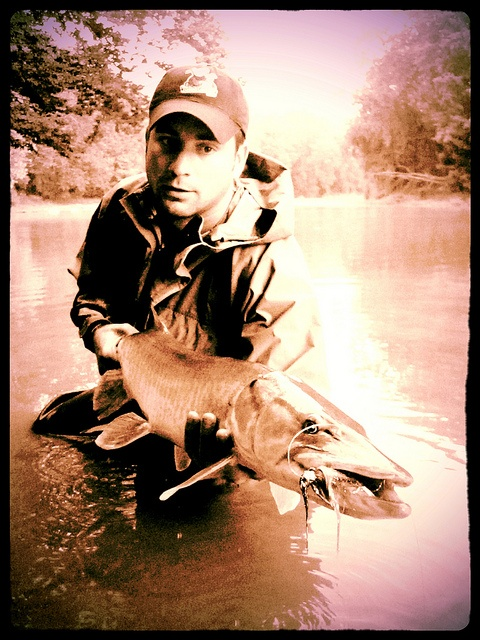 Relatively rare - a river muskie on the fly!: Fishing Photography, Fishing Muskies, Filled Fishing, Fly Fishing Tying Alaska, Of The, Fishing Photos, Mother Nature Relaxation, Fishing Hunting